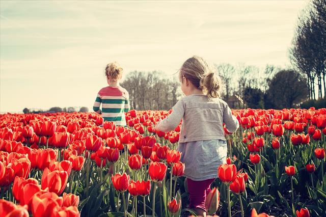 ADHDの子供の叱り方:ゲーム作戦