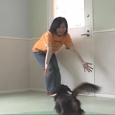 [犬のしつけ]だっこ